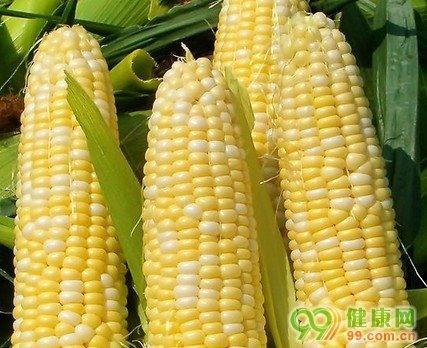 孕妇梦见好多玉米地