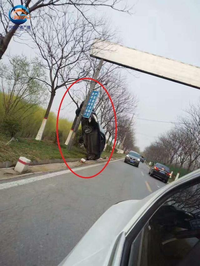 """郑州黄河大堤一辆轿车""""爬""""上广告杆"""