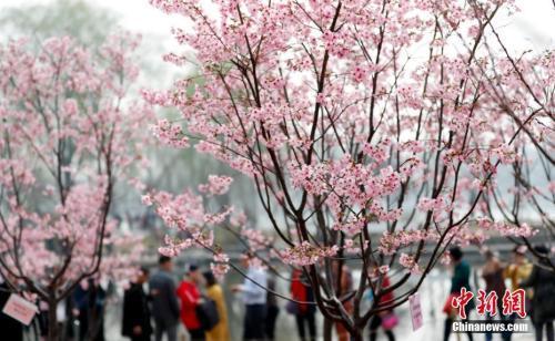 今起全国自北向南气温回升 10日郑州气温飙至32℃