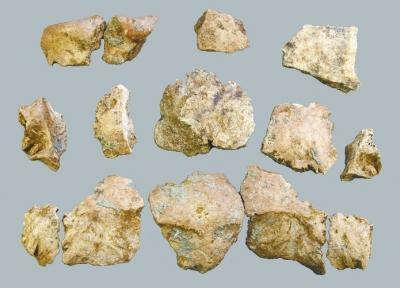 """""""许昌人""""2号头骨化石出土 或是古人食脑证据"""
