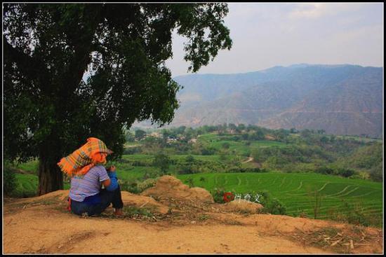 云南发现古滇国村落遗址 填补了研究领域又一空白