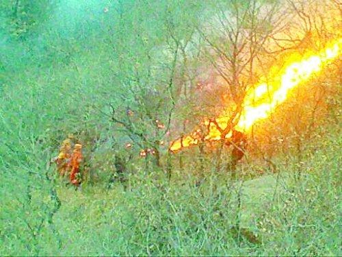 新密尖山发生山林大火 上千救援人员紧急扑救