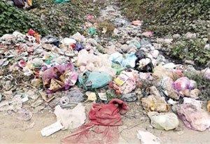 郑州这些路段垃圾遍地脏乱差 被暗访曝光