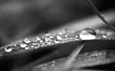 河南本周连续大范围阴雨 今日局部地区暴雨
