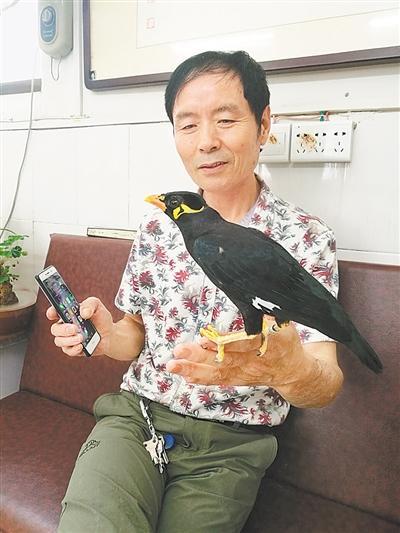开封6旬老人养鸟如养小孩儿 能说话唱歌成明星