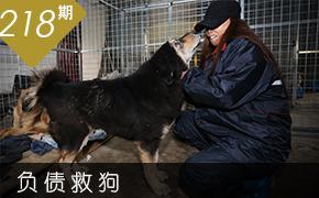 郑州女子遭车祸毁容 卖房负债救流浪狗