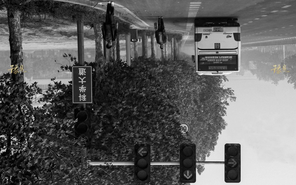 豫见第十八期:游荡在城市里的孤独灵魂02