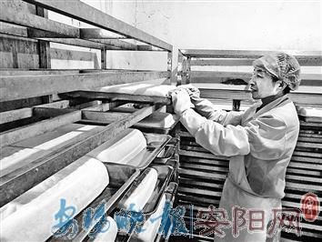 二十五磨豆腐 安阳厂家日产2万斤豆腐仍供不应求