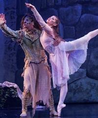 6月20日郑州演出 芭蕾舞剧《美女与野兽》