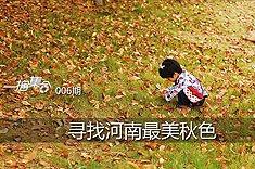 006期:寻找河南最美秋色