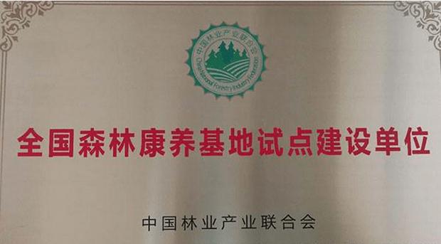 """云台山入选""""全国森林康养基地试点建设单位"""""""