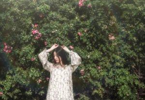 网红拍照最爱的蔷薇花墙地址大盘点