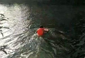 许昌老汉见一人漂水里 跳水营救