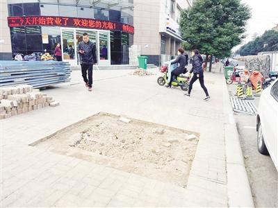 漯河路边两棵行道树莫名失踪 园林部门正在调查