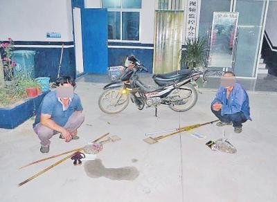 河南两男子捉574只壁虎想要卖钱被刑拘