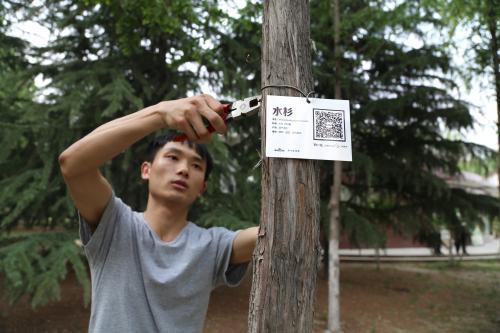 """热""""心""""糊涂""""账"""":河南大妈做20年公益环保欠债85万"""
