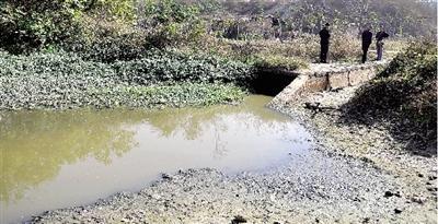 贾鲁河现污沟渠 多部分结合查询拜访未发明污染水源