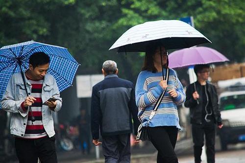 """这些地方有雷雨 雨水未来几天成""""常客"""""""