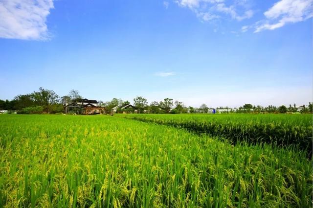 http://www.hjw123.com/huanjingyaowen/44979.html