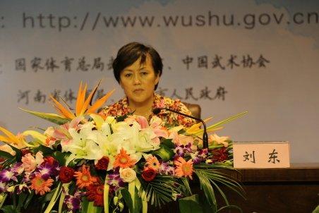 第九届中国郑州国际少林武术节官方网站开通