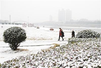 漯河迎来今冬第二场雪 外观白雪皑皑格外优美