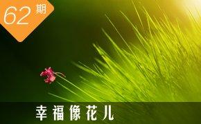 一拍集合第062期:幸福像花儿