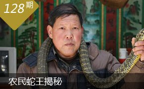农民蛇王揭秘