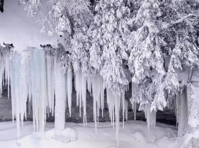 下雪啦!洛阳白云山2017初冬第一场雪降临,快来看看有多美!