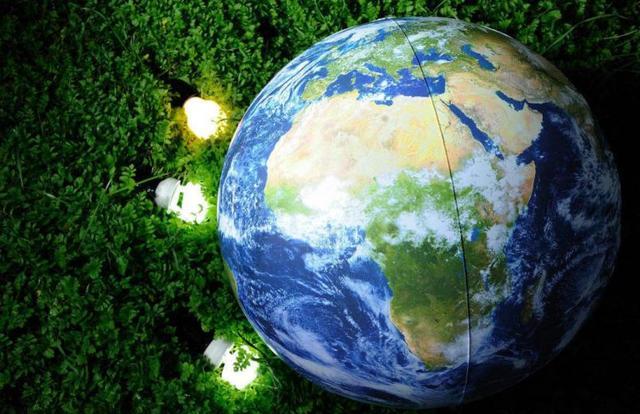 春回半岛 匠心护木 周末来御景半岛播种绿意吧!