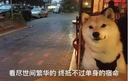 """【官方活动】""""大城小爱 缘聚中秋""""相亲联谊活动报名啦"""