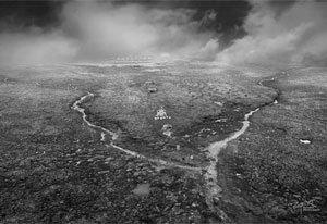 河南自然摄影师高建设荣获第十二届中国摄影金像奖