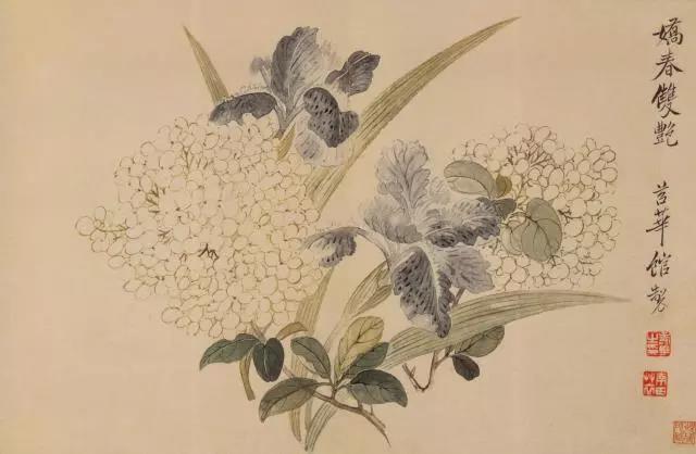 花草山水国画——清·恽寿平