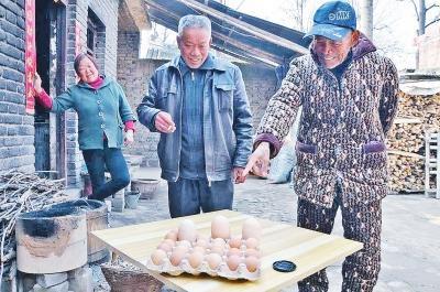 """郏县农户家中母鸡产下蛋中""""明星"""" 重208克"""