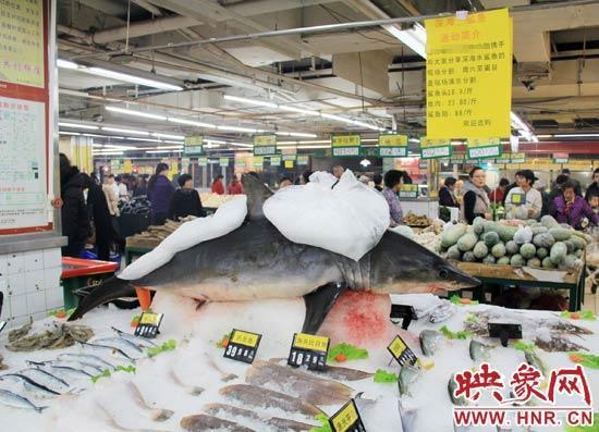 郑州市一家超市海鲜区的冰架上赫然摆着一整条鲨鱼在出售,鲨鱼肉价钱为23.80元每斤,远低于牛羊肉的价