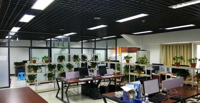 六合心水论坛·大豫网百城互联计划全面启动 开启家乡智联新生活