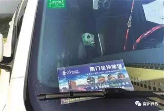 """南阳城区现""""澳门金沙赌场""""宣传单 电信诈骗新手段"""