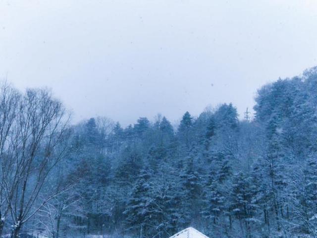 河南这些地方下雪啦 你那下了吗
