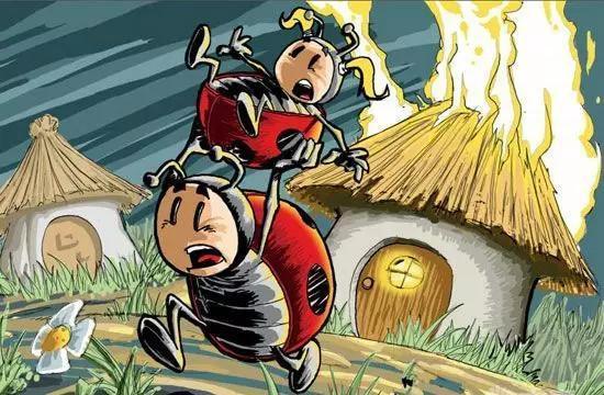 合家欢儿童剧《甲虫山谷》开票啦!票价低至50
