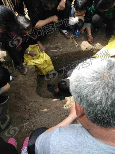 地下有宝藏 周口一村庄胡同里挖出180斤宋朝古币