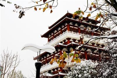 许昌多地降雪达暴雪级别 今明两天尚有雪最低温-12℃