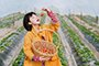 【浪一圈】摘草莓做甜点 带孩子体验春天最高颜值玩法