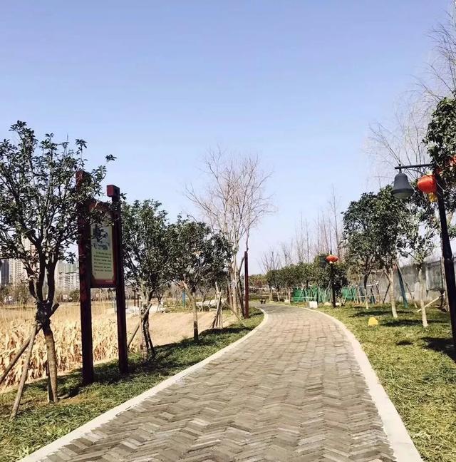 建业·西湖庄园 | 春已到!坐地赏花花似锦、园中有绿绿常青!