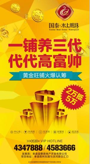 国泰・水上明珠 黄金旺铺火爆认筹中