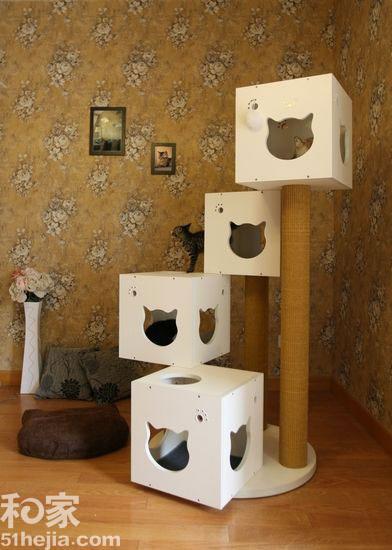 12个猫咪家居创意设计家有夫妻情趣宠物不断什么玩情趣用品图片