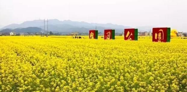 """穿越东江湖""""徒步活动,青年男女可在桃花岛上系同心锁以见证爱情."""