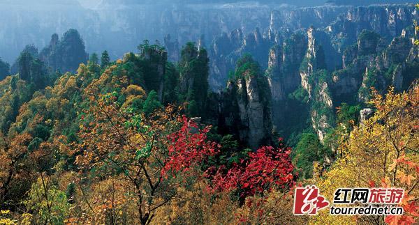 冬游有得玩 12月起张家界景区、索道均优惠开放