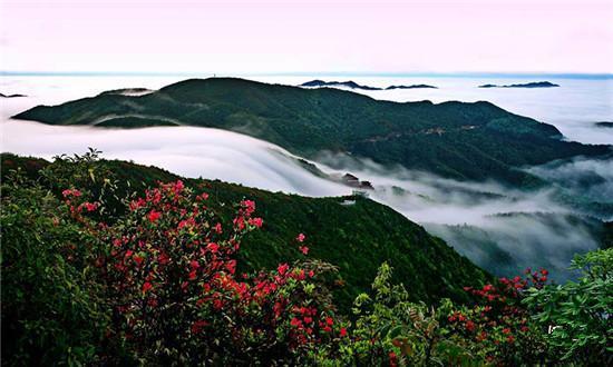 [永州]阳明山国家森林公园图片