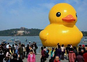 大黄鸭游进颐和园