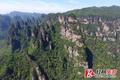 航拍世界自然遗产武陵源:绿染峰林(图)