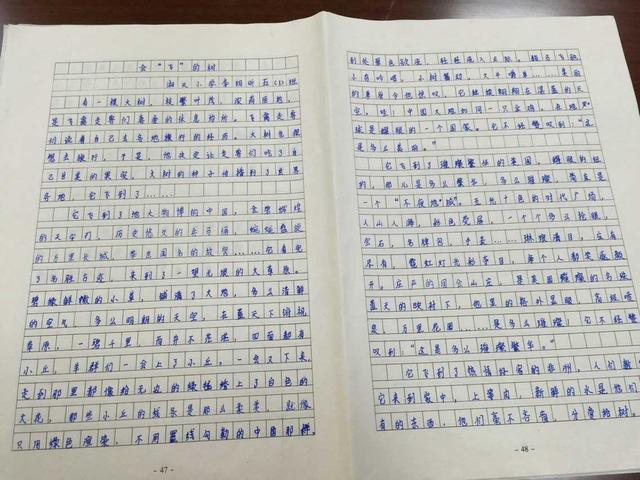 湖南高考故事系小学生重温题小学阅读高考情分钟一网友作文图片